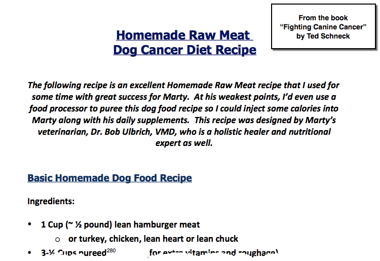 Dog Cancer Diet Recipe