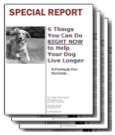 Dog Cancer Reports